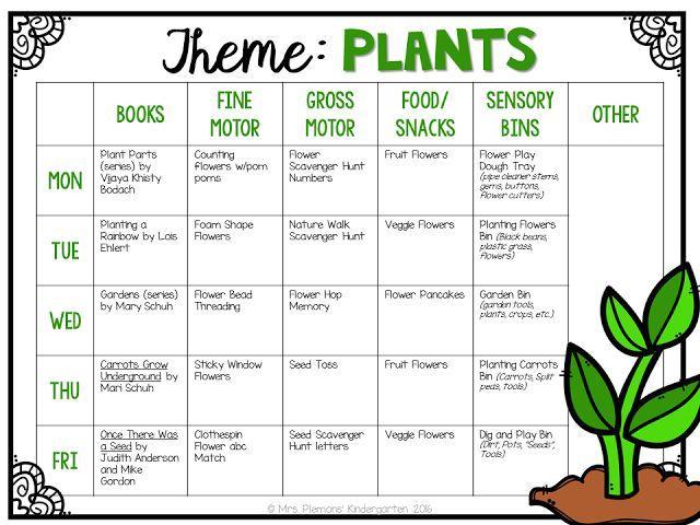 Worksheet On Plants For Preschoolers