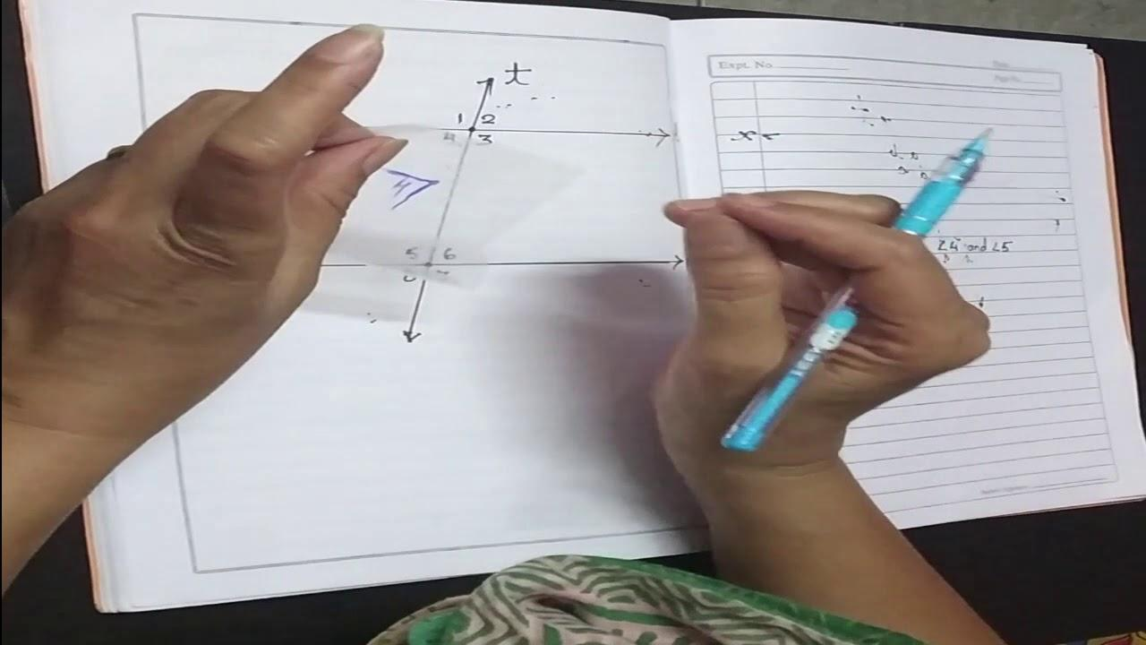 Algebra Lab Worksheets 7