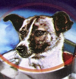 Laika Facts for Kids