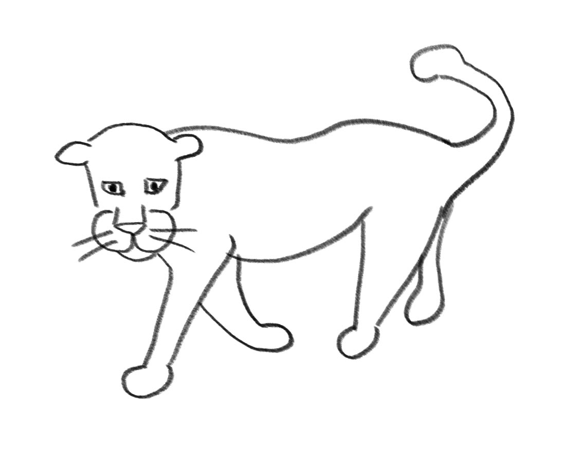 Draw a leopard in 10 steps
