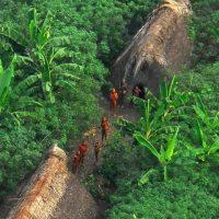 Mais de 100 tribos podem viver ainda isoladas do mundo