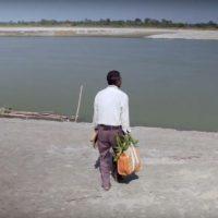 Desde há 40 anos que um homem na Índia planta uma árvore por dia