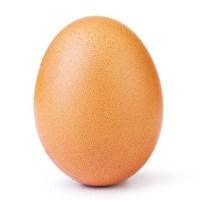 Instagram: Conheça o ovo que superou o recorde de Kylie Jenner