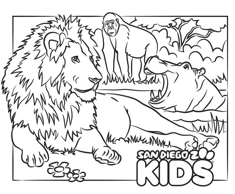 Coloring Page Lion And Friends San Diego Zoo Kids