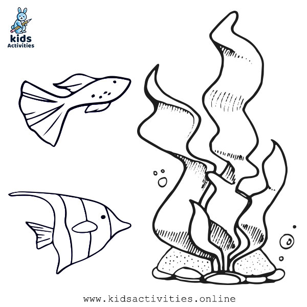 Sea Animals Free Printable Templates Coloring Pages