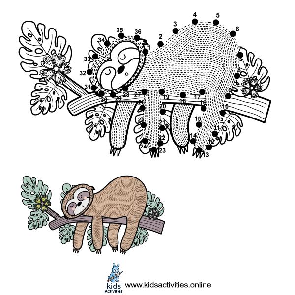 drawing a cute sloth