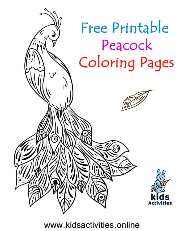 Free, Printable Peacock Coloring Page