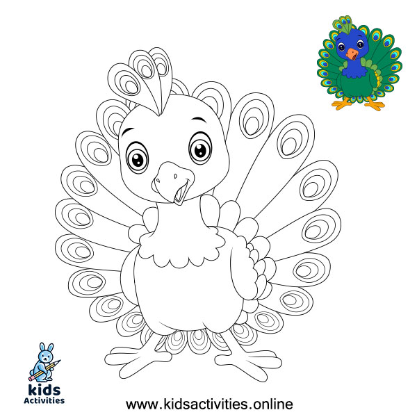 peacock coloring pages easy