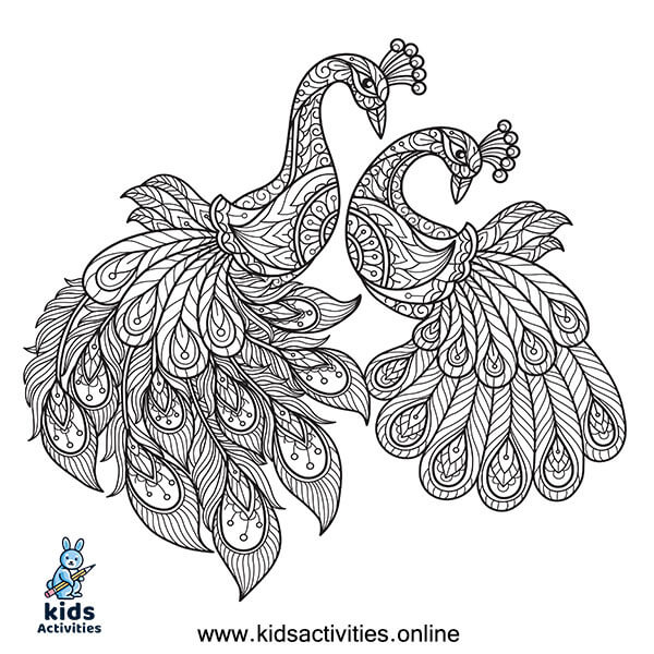 Outline of peacock for colouring