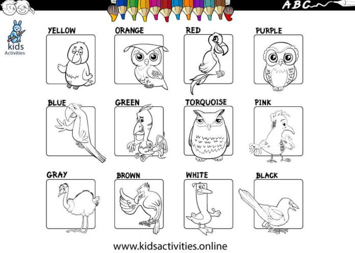 basic colors worksheets for kindergarten