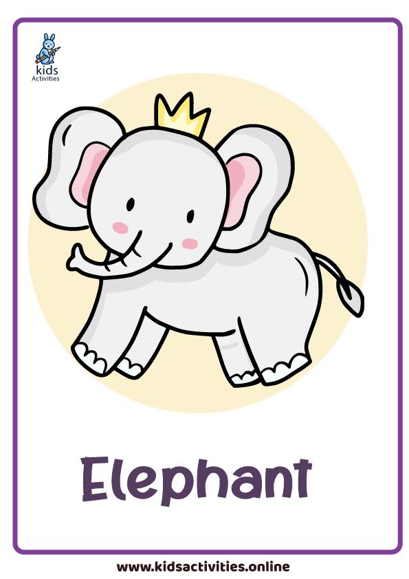 animals flashcards - elephant flashcard