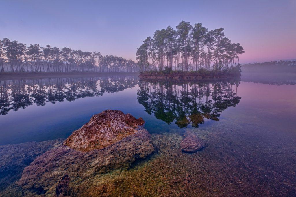 Everglades national park virtual visit