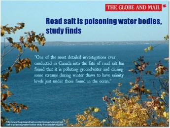 Road Salt is poisoning water bodies
