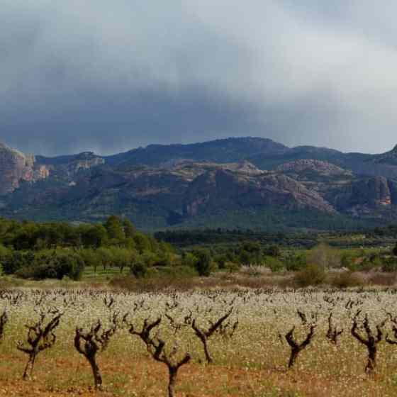 Via Verde krajobrazy