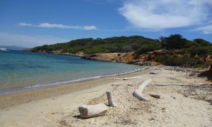 wakacje na Lazurowym Wybrzeżu - Wyspa Porquerolles