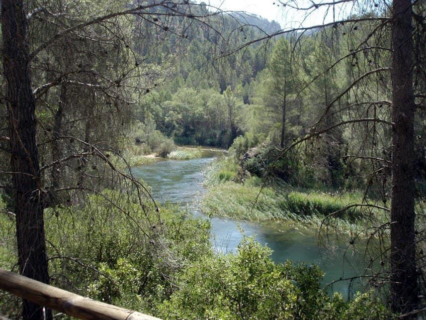 Rzeka Cabriel