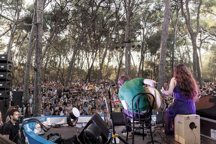 Koncerty - Festival Vida