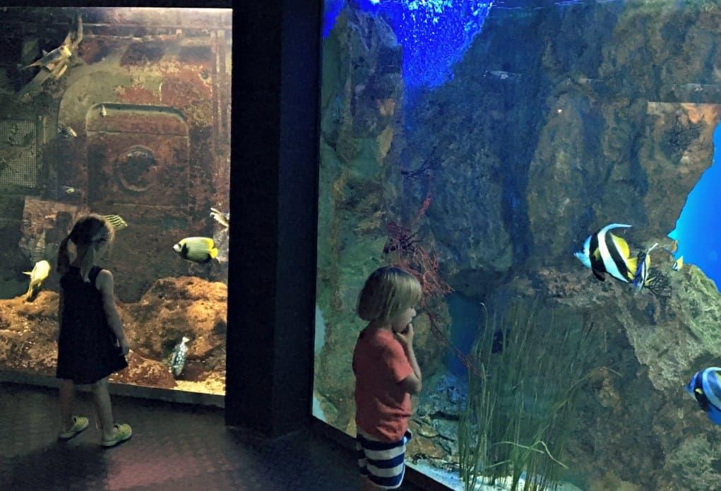 Aquarium w Saint Malo