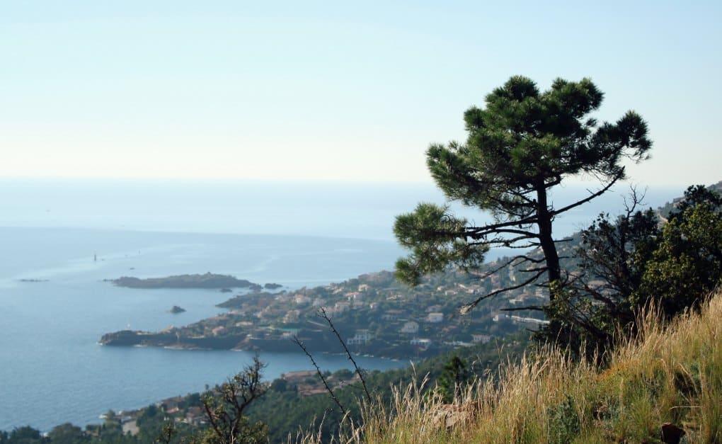 Wycieczki w okolicach Nicei