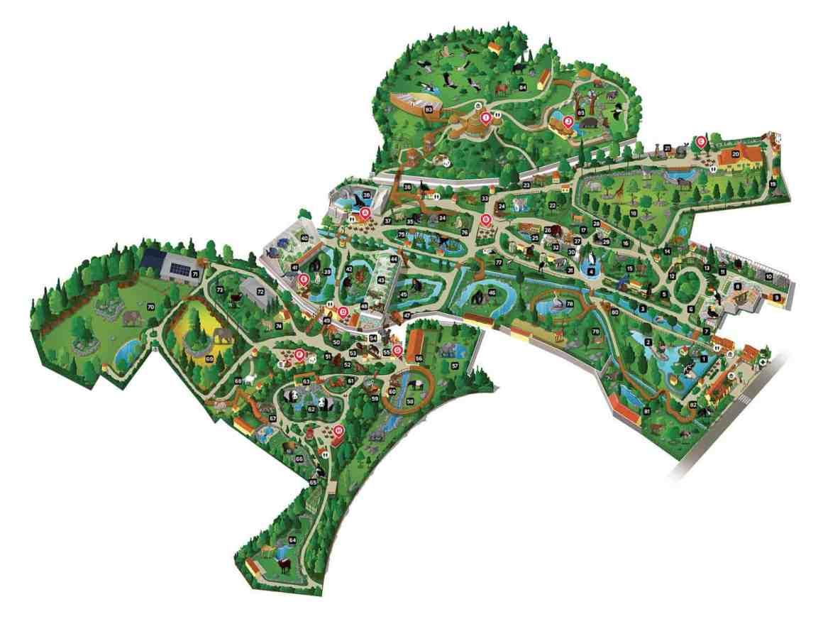 Plan Zoo w Beauval