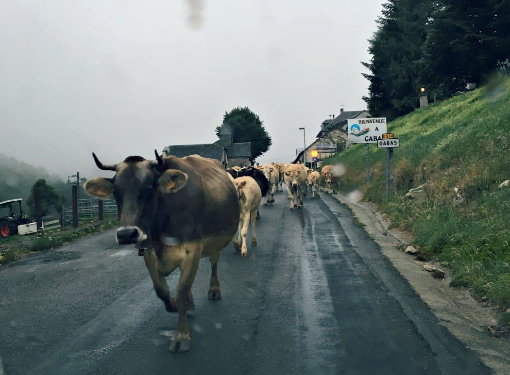 Przez Pireneje do Hiszpanii