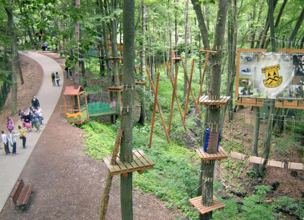 Park linowy w ZOO w Oliwie