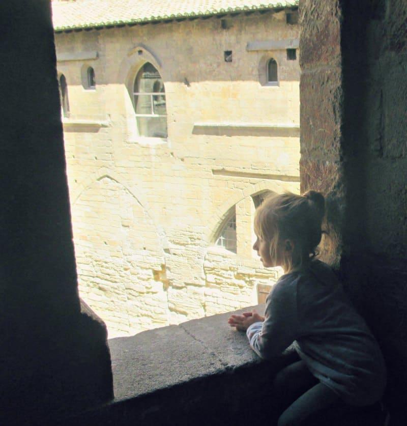 Zwiedzanie Prowansji - Awinion