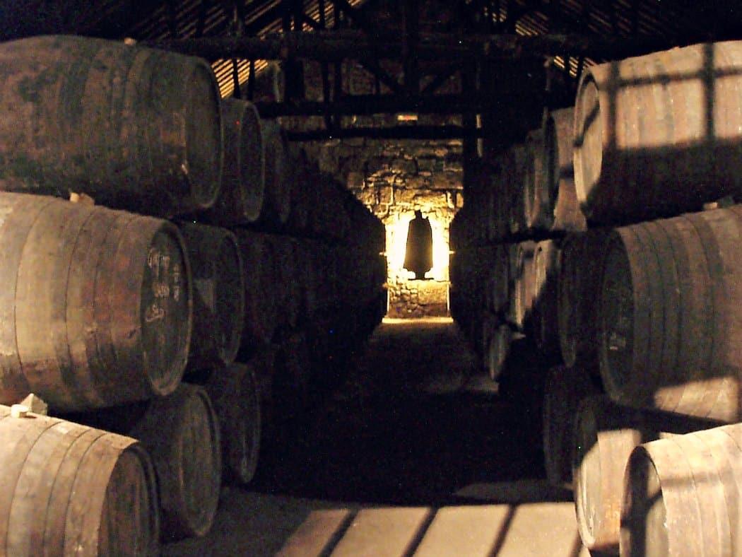 Porto atrakcje - bodegi