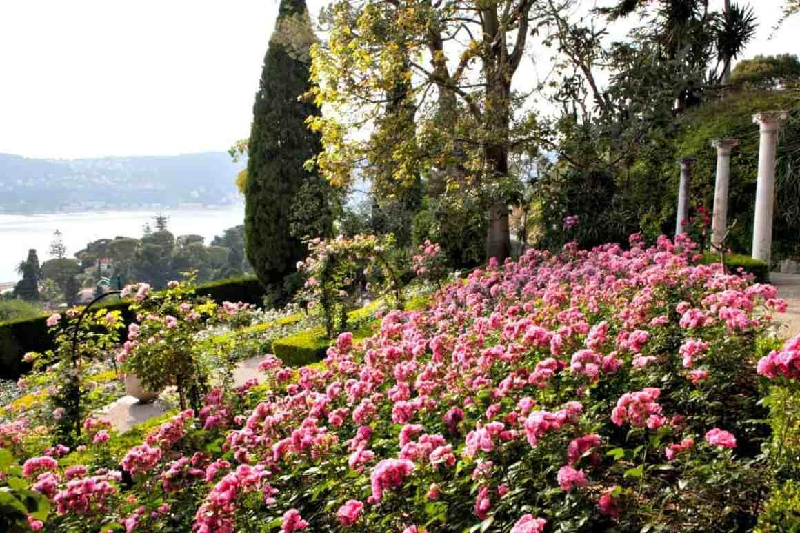 Zwiedzanie Lazurowego Wybrzeża - Villa Rothschild