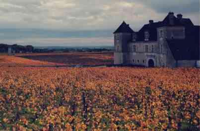Jesienna Burgundia zwiedzanie z dzieckiem