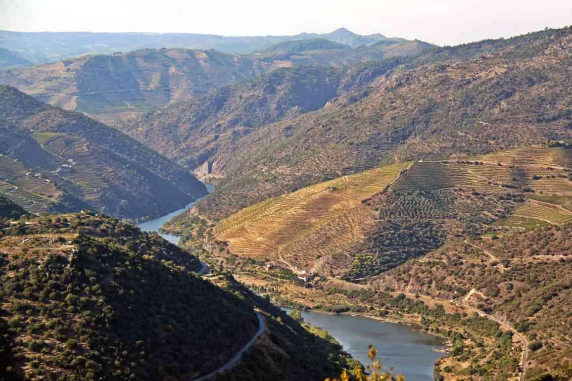 Dolina Douro - wakacje w portugalii