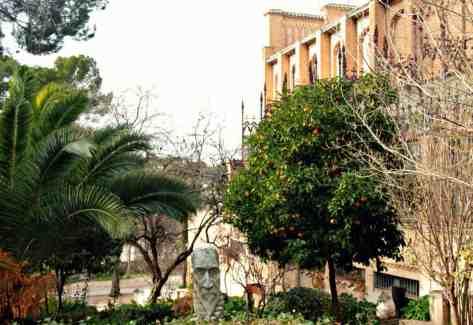 Zakatki Toledo