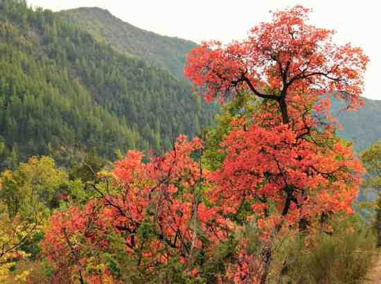 Jesien w Prealpach