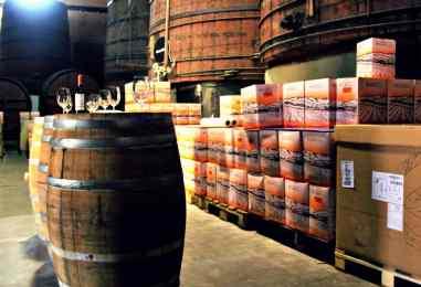 zwiedzanie winnic Katalonii