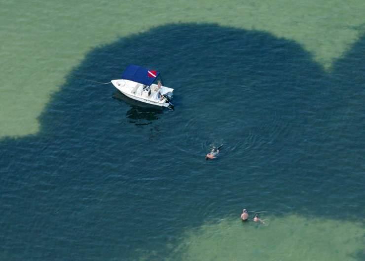 Gulf County Diving-GCFL
