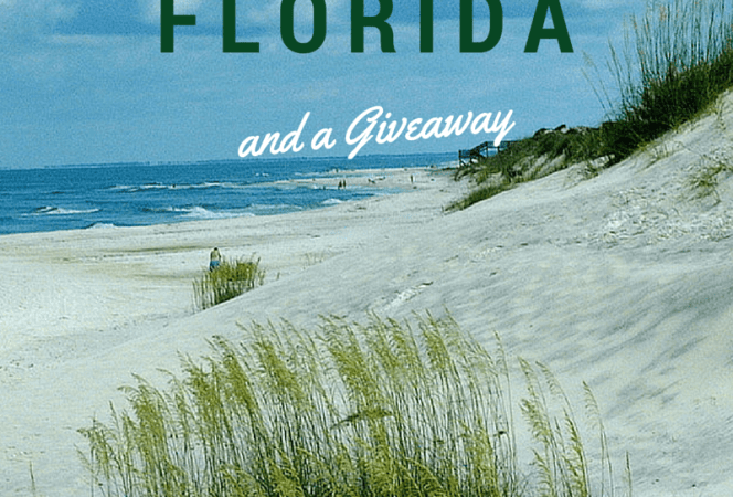 Gulf County Florida Giveaway-Kids Are A Trip
