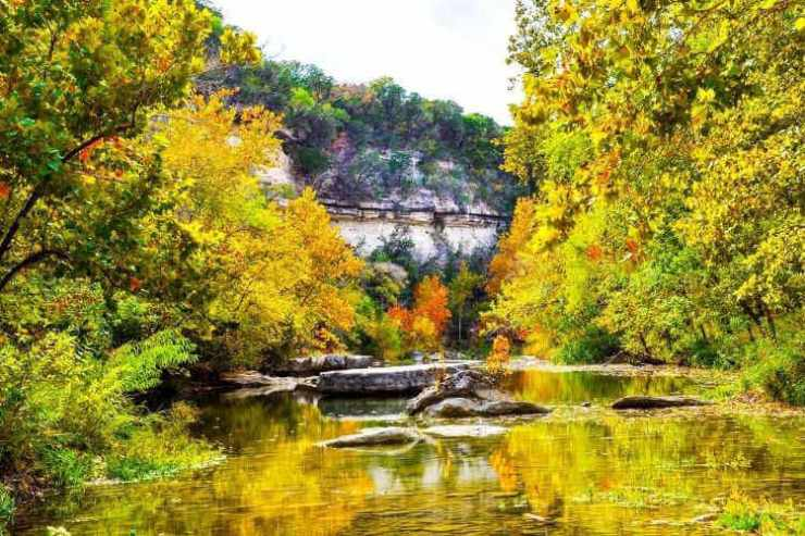 Fun fall activities Texas-Kids Are A Trip