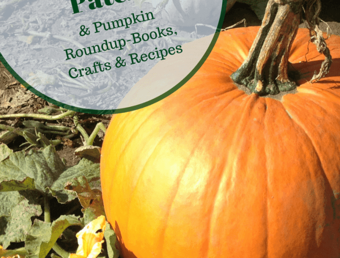 Celebrating Fall with a Pumpkin Patch Visit and Pumpkin Roundup!