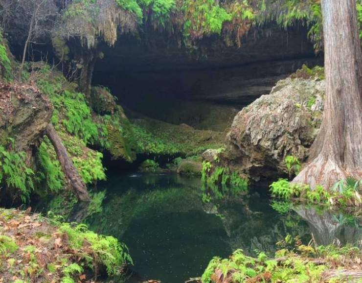 Family Friendly Things to Do in Austin, Texas Westcave-Preserve-Kids Are A Trip