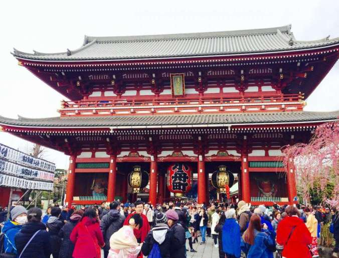 Top 7 Things Not to Miss in Tokyo with Kids