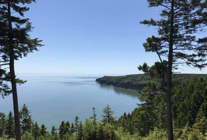 A New Brunswick, Canada road trip should be on every traveler's bucket list. Verdant forests, wildlife, and stunning vistas of the Bay of Fundy will have visitors wishing they could stay longer. - Kids Are A Trip