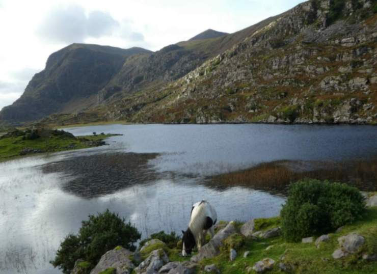 Things to Do in Killarney Horse Gap of Dunloe-Kids Are A Trip