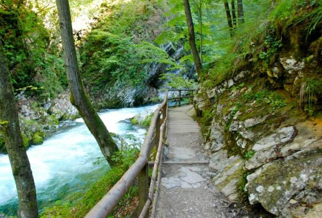 Slovenia has gained in popularity, but it still remains one of Europe's hidden gems. Come see what to do in Slovenia and start planning your trip. - Kids Are A Trip