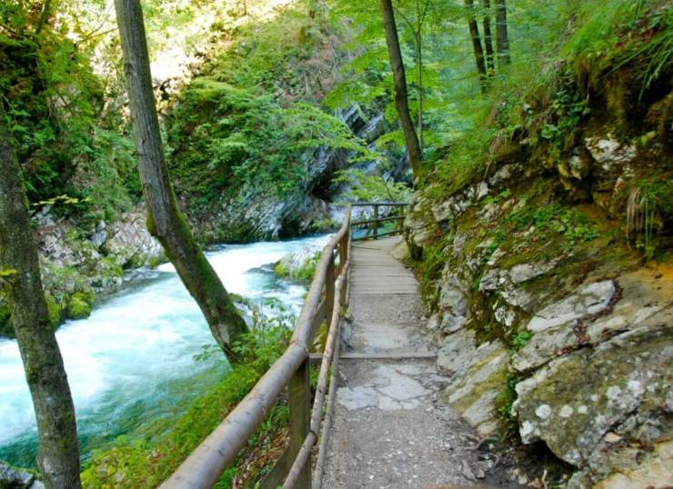 What-to-Do-in-Slovenia-Visit-Vintgar-Gorge-Kids-Are-A-Trip