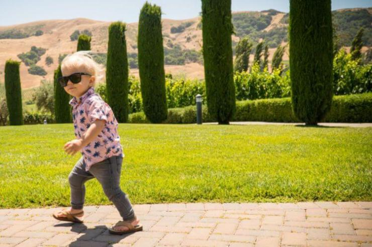 Viansa-winery-Napa-with-kids-Kids-Are-A-Trip