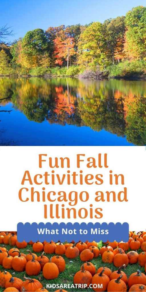 Fun Fall Activities in Chicago and Illinois-Kids Are A Trip