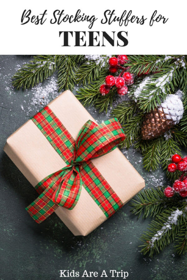 It can be difficult to buy holiday gifts for teens. Let us help with our favorite stocking stuffers for teens to add to your list!-Kids Are A Trip