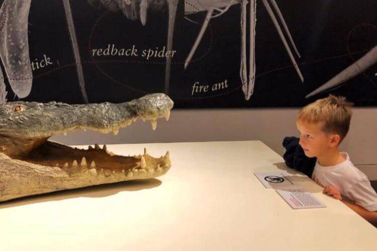 Australian-museum-sydney-with-kids-Kids-Are-A-Trip