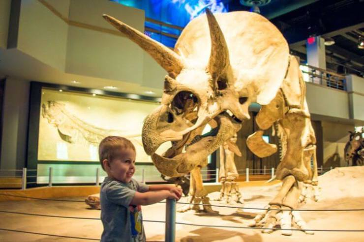 Royal-Tyrrell-Museum-with-Kids-Kids-Are-A-Trip