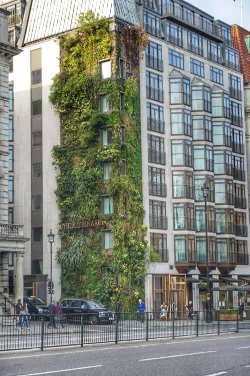 Living-Wall-Athenaeum-Hotel-in-London-for-families-Kids-Are-A-Trip